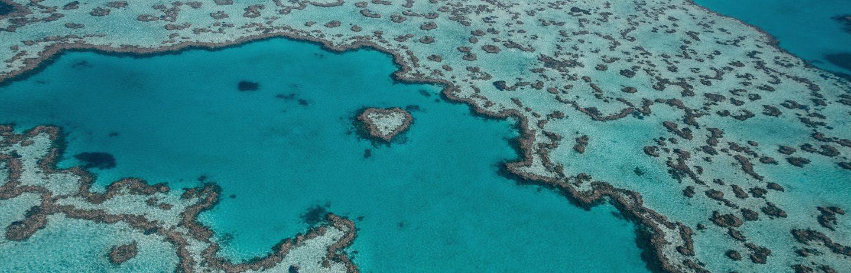 A Grande Barreira de Corais na Austrália.